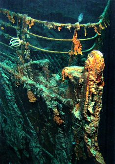 Facts and information about the wreckage of Titanic. Robert Ballard, Relics, artefacts and Titanic Tours.