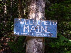 Hiking Maine Woods