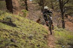Cam Zink #downhill #freeride #mtb #dog