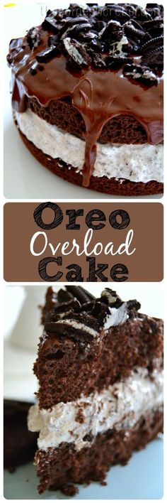Oreo Overload Cake is for serious Oreo cookie lovers! Desserts, Oreo Overload Cake is for serious Oreo cookie lovers! Brownie Desserts, Chocolate Desserts, Just Desserts, Delicious Desserts, Dessert Recipes, Yummy Food, Chocolate Lovers, Cake Chocolate, Chocolate Frosting