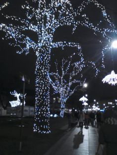 Misternie wykonane świąteczne dekoracje Warsaw, Concert, Recital, Concerts, Festivals