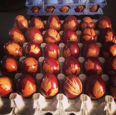 Natural onion colour