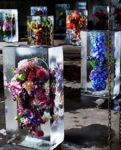 Beautiful flowers carefully frozen and displayed for preservation by flower shop owner Azuma Makoto