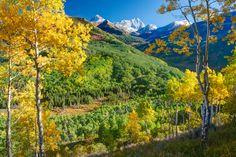 Colorado Fall Picture