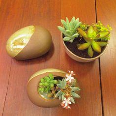 Essas belezinhas também estão no Design Weekend esperando por você na @casastopa. Heitor Penteado 699. Passa lá!  #oitominhocas #designweekend2016 #suculentas #suculovers #ceramica #decoração #plantinhas