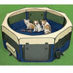 TopPets Large Portable Soft Pet Soft Side Play Pen Or Kennel For Dog, Cat,  Or Other Small Pets. Great For Indoor And Outdoor (Moss Green)    Want To  Know ...