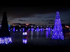 Examiner.com (Nov. 19) -- Video of Sea of Trees at Christmas Celebration Orlando.