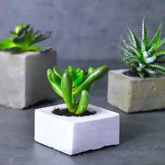 Cement Flower Pots, Diy Concrete Planters, Cement Pots, Diy Planters, Succulent Planter Diy, Terrarium Diy, Decoration Plante, Concrete Crafts, Diy Home Crafts