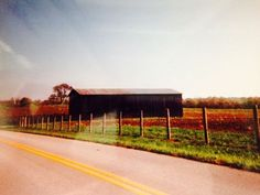 FSBO Dover KY - A 140 acre historic farm located between Maysville and Augusta in Dover, KY (1/2 mile south of KY #8 and near the Ohio River). Farm includes a large house, 2 tobacco barns, and 15,000 feet of newer woven wire boundary line fencing and is about equally divided into cropland, pasture, and woodland with marketable timber. The house has been restored and features gas heat/AC, 4 bedrooms, 2 bathrooms, modern kitchen, LR, DR, and front porch.