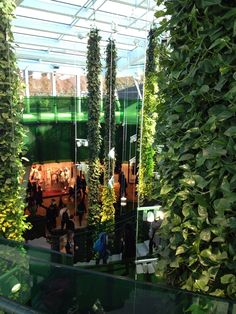Emporia shopping center - living plant walls