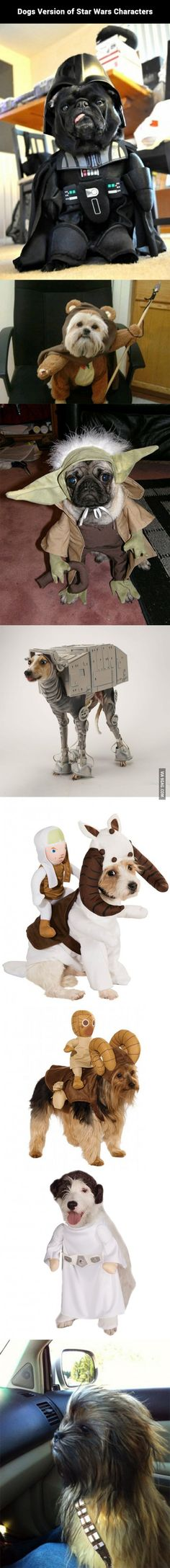 Dogs Version of Star Wars Characters