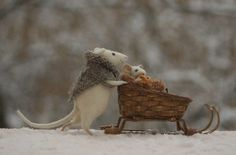 another winter walk.. I am in love with her mice..