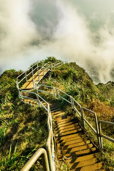 The Stairway To Heaven on Oahu, Hawaii is one of the wonders of the world!