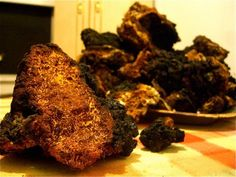 Chaga:  to boil or not to boil?