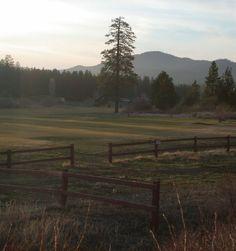 Moonridge, Big Bear, CA