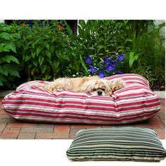 indoor/outdoor washable dog bed Outdoor Dog Bed, Indoor Outdoor, Outdoor Spaces, Dog Pool Floats, Dog Beds For Small Dogs, Large Dogs, Designer Dog Beds, Green Bedding, Outdoor Flooring