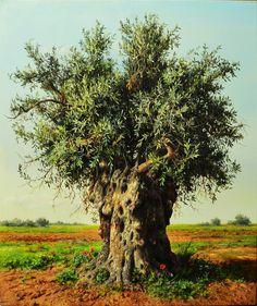 Olive tree by Elidon Hoxha Wonderfully detailed!