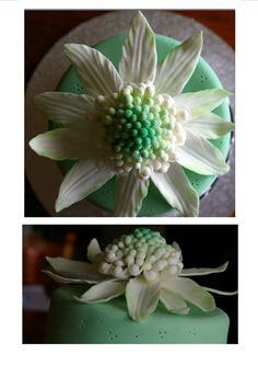 White Waratah - sugar paste