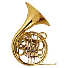 French Horn- I have played ever since 6th grade, doing all-county band, and the Maryland Classic Youth Orchestra.