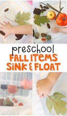 We LOVE this fall item sink float sensory bin science activity. Great for fall in tot school, preschool, or even kindergarten!