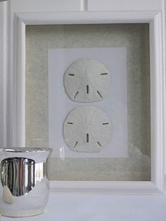 shadow box sand dollars-this would be a good way to display some of my finds.