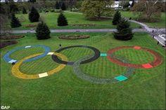 Olympics' grass