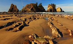 Highway 101, which runs along America's west coast from Washington state through Oregon to California, offers access to some of the country's most stunning hiking routes, writes Sean Patrick Hill.