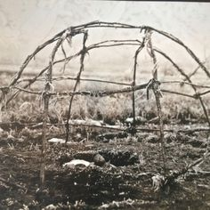 My mom brought me to many sweat lodges when I was younger and eventually one was built in her backyard.  I would love to build my own sweat lodge someday.