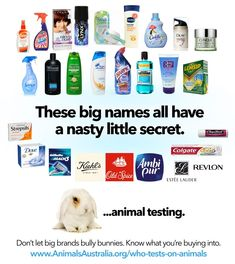 Common Australian products that use animal testing - be aware, please share