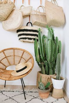 DIY Hanging Bag Rack with beautiful cactus in the corner