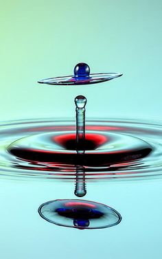 13 | High-Speed Photography Turns Water Droplets Into Liquid Sculptures | Co.Design | business + design