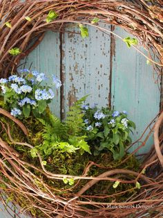 Save those old grapevine wreaths —remove the tired silk flowers or christmas greens and plant a live spring garden wreath!