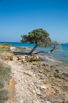 Kolymbithres beach, Paros island Cyclades, Greece