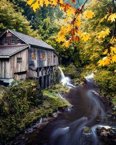 Cedar Creek Gristmill~such a cool stream flowing~