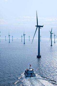 opcion:    Offshore_wind_power