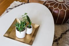Small Space, Big Style: Take a Cue From the Instagram-Worthy Home of ...