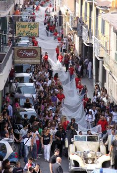 World record longest veils