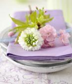 Frühlingsblüher als Deko: Schachbrettblume | LIVING AT HOME