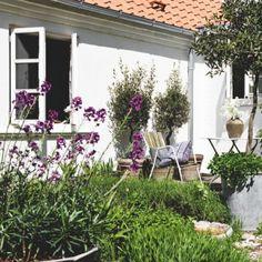 Dorthe og Finn Topp solgte deres lejlighed og købte et hus på landet, hvor det er sommer året rundt - næsten da