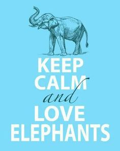 I do love Elephants!