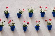 DIY Maceteros/Planters  #conmogollondeamor