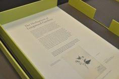 museum presentation box