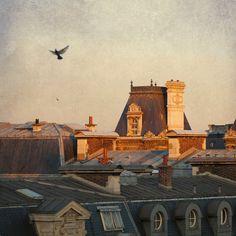 Paris Photo - Paris Dawn, Hotel de Ville - Rooftops of Paris, France in Morning Sun with Birds, Fine Art Travel Photograph via Etsy.