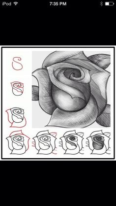 Drawing Doodles Sketches How to sketch a rose step by step DIY tutorial instructions: - Drawing Lessons, Drawing Techniques, Drawing Tips, Drawing Reference, Drawing Sketches, Art Lessons, Drawing Ideas, Sketching, Sketch Ideas
