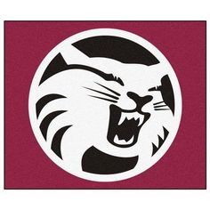FANMATS NCAA Cal State - Chico Indoor/Outdoor Area Rug