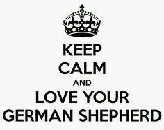 I ♡ my German Shepherd Dog!