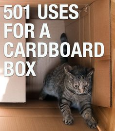 Not sure what to do with those empty cardboard moving boxes? Never fear, we give you 501 awesome uses for your boring box. http://j.mp/157MISA