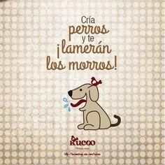 Cría perros ¡y te lamerán los morros! #frases #RefranCaninoKucoo