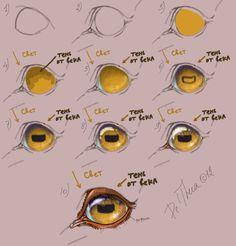 dibujo de ojo de caballo