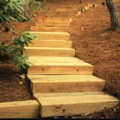 wooden retaining wall steps | Timber Stairs